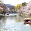 減少する日本人家庭の季節の伝統行事