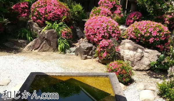 山口家住宅の庭