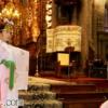 甦りの聖地、熊野神社と熊野信仰